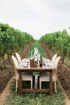 Lasting Events- Harvest table scape in vineyard- Kurtz Orpia Photography