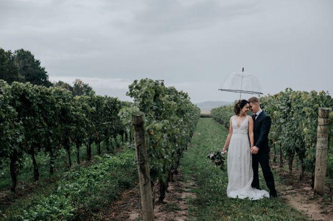 Bride & groom under umbrella in vineyard at The Hare Wine Co