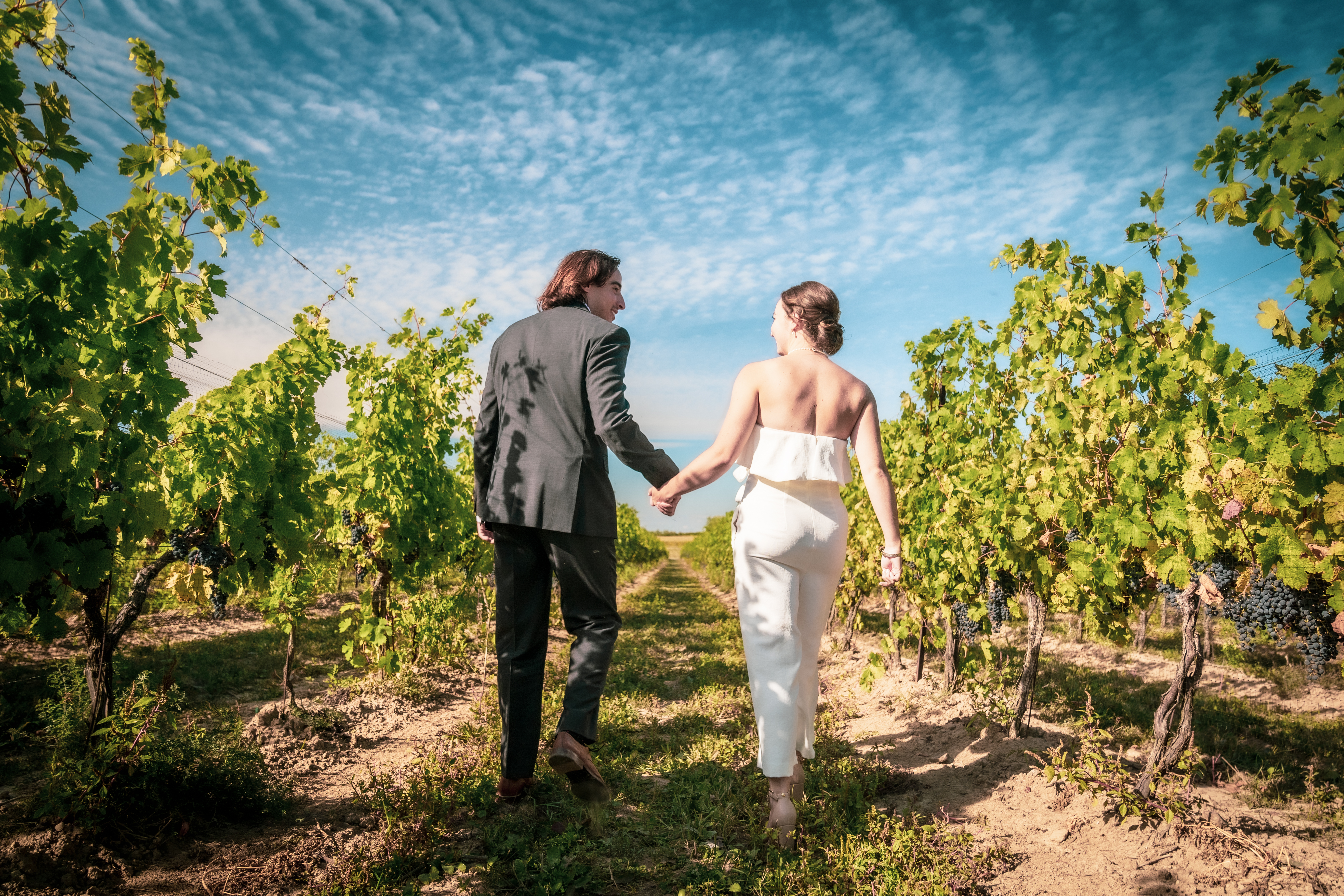 Bride and groom stroll through the vineyards at London Born Winery