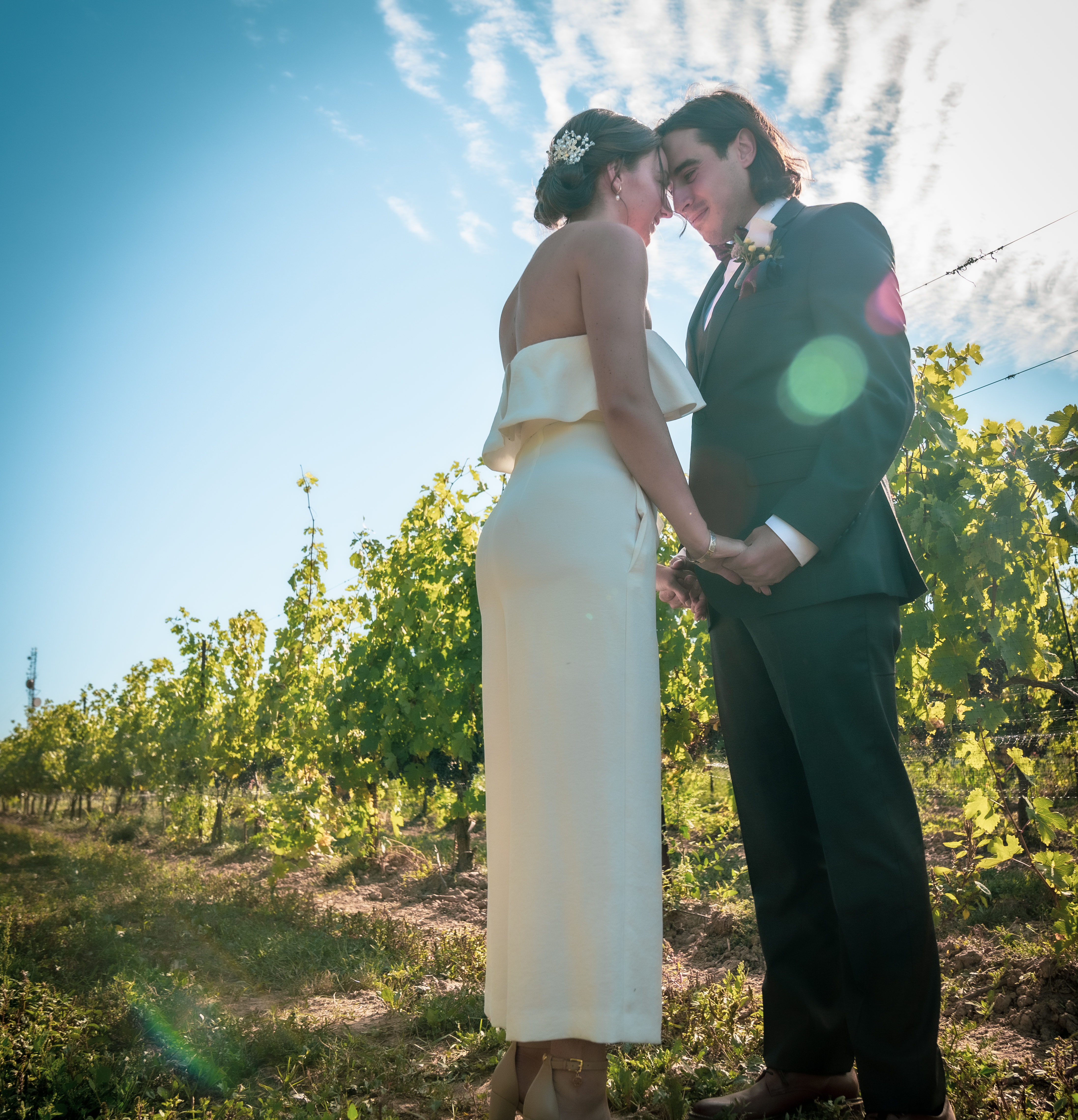 Bride and groom in the vineyard at London Born Wine Co