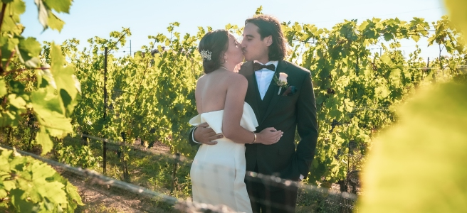Bride and groom kissing in the vineyard